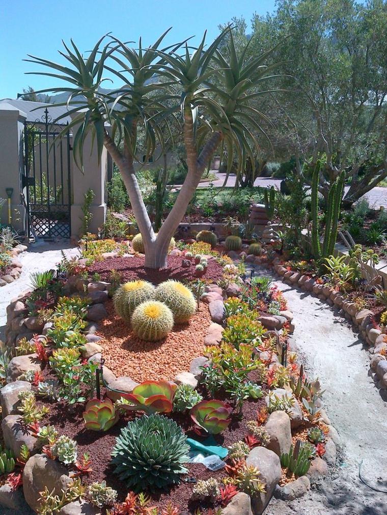 suculentas de jardín con luz